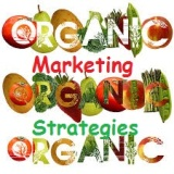 organic marketing strategies