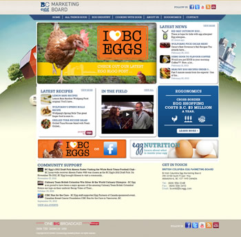 BC Egg content marketing platform